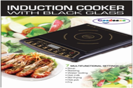 Induction Cooker Top. Single.