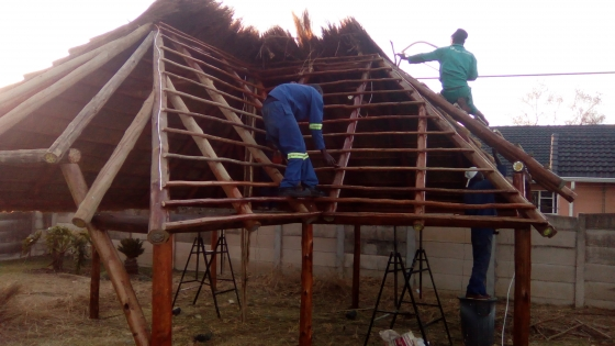Affordable Thatch Lapa, roof thatching