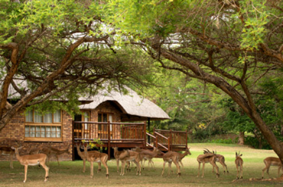 Kruger Park Lodge fractional ownership