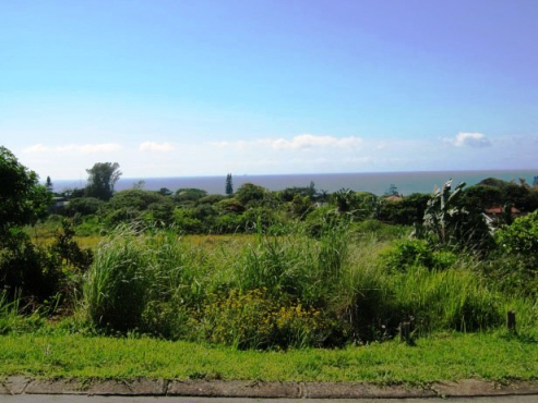 Large Stand with Stunning Sea views for sale in Port Edward