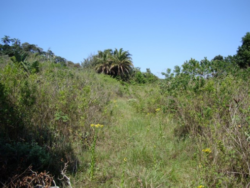 GLENMORE BEACH  – PRIME LAND – Now offered at R2,95m excl. VAT.