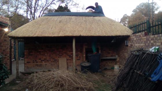 Lapa, Thatching, lapas, grass roofs, grassdake