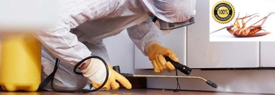 Pest Control Pros (Pty) Ltd - Pest & Termite Control