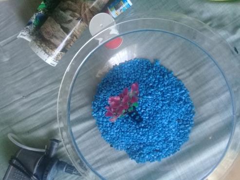 Large Fish bowl (30L)