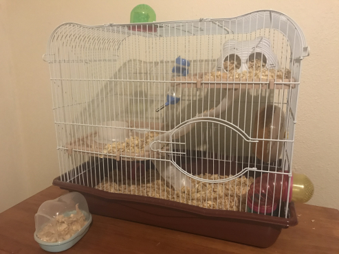 Hamster Cage - Hamster Hotel