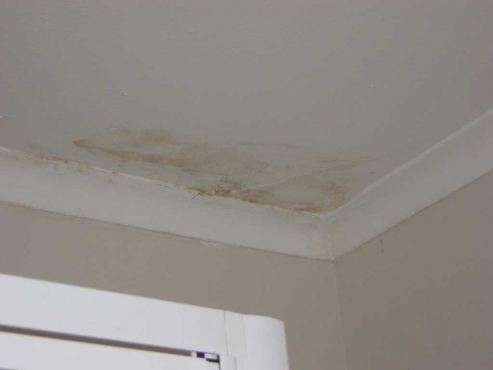 We Repair Roof Leaks and Damaged Roofs