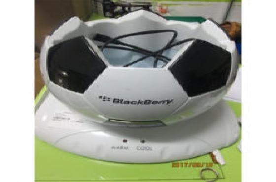 Everlast soccer ball