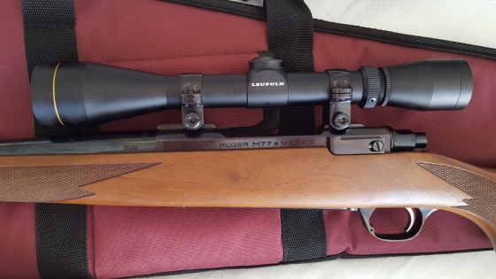 Ruger Rifle