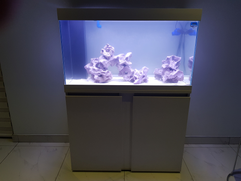 Starfire glass marine fish tank 1m