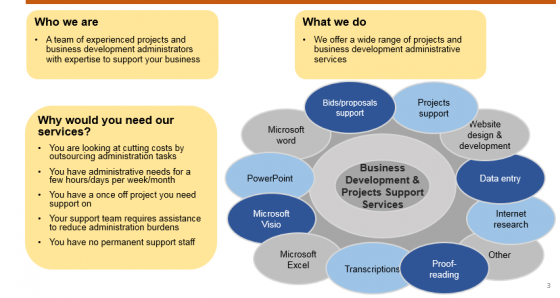 Business Development and Projects support services