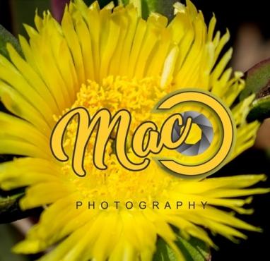 Mac-C Photography Spring Specials!!