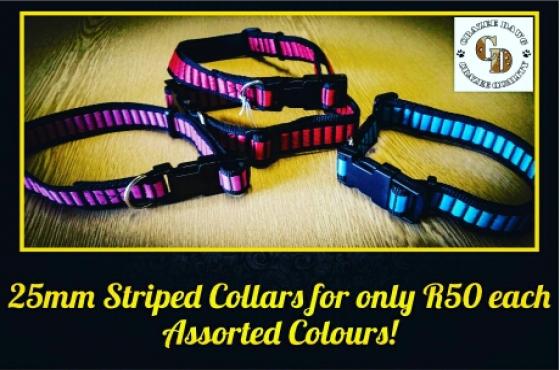 25mm Striped Collar