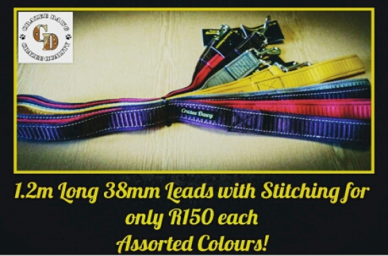 38mm Leads (1.2m long)