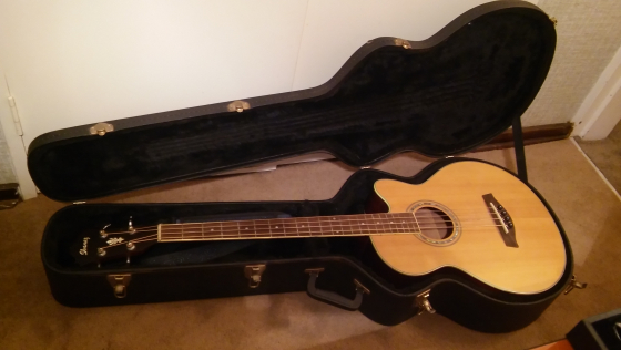 IBANEZ  AEB 10E ACOUSTIC ELECTRIC BASS