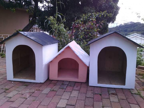 DOG KENNELS. ALL SHAPES. ALL SIZES