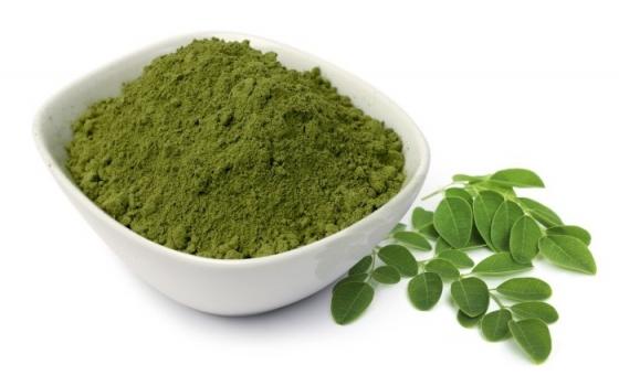 Wholesale moringa powder