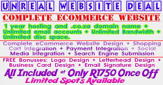 Complete eCommerce Or Business Website Package - R1750