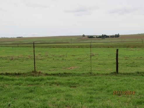 Middelburg 92 ha cattle farm for sale