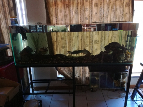 500L fish thank for sale
