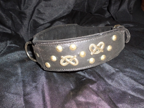 Large Leather Dog Collar