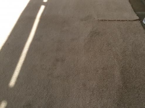 Wool carpet offcut