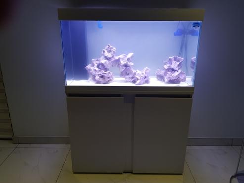marine fish tank junk mail