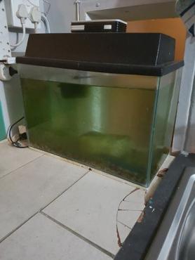 Fish Tank Urgent sale,