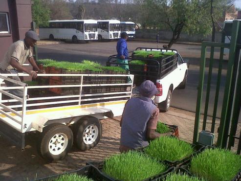 Supply organic feed to farmers