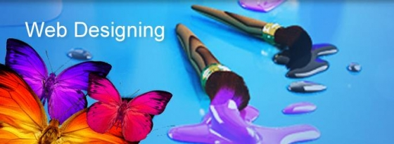 keen to learn web design training firm in Hyderabad