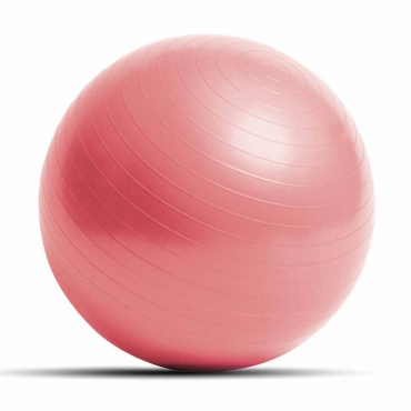 Reebok Exercise Gym Ball WITH PUMP