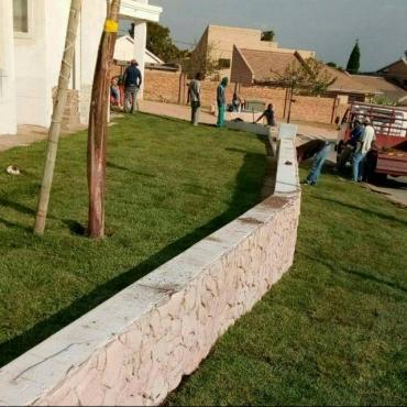 Evergreen,Kikuyu & LM Instant Lawn: 0617591082