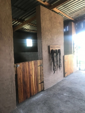 Horse stables to rent