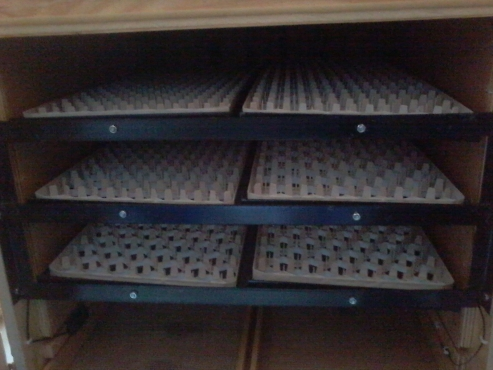 Industrial Automatic incubators for bird breeding.