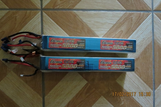 2X GENS ACE 12 CELL 5000 MAH BATTERY PACKS