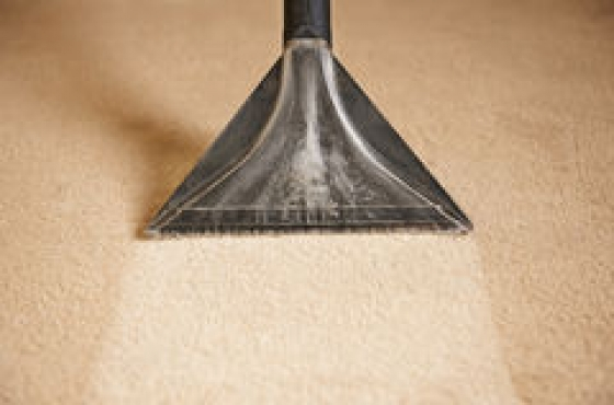 ATeam carpet and upholstery cleaners