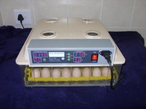 Automatic Incubators for breeding Parrots, Ducks, Chickens, Quail etc