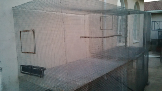 Cage's for sale