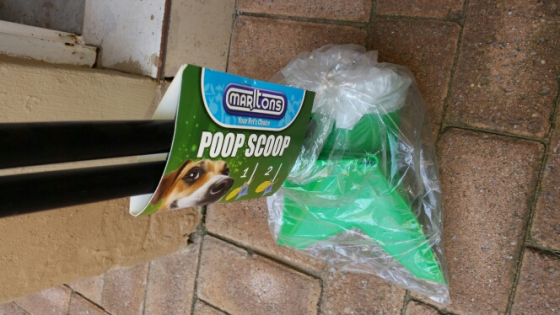 Brand new poop scoop for R80