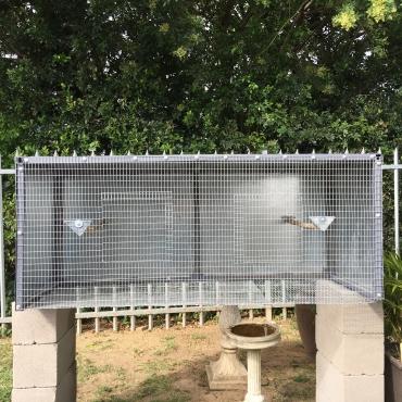 Cage/aviary
