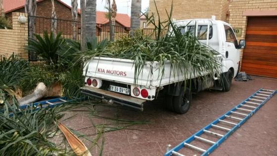 Tree felling Boom Sloping