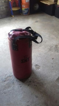 Red SNT Punching bag