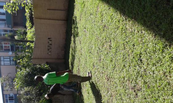 GRASS EN ALL WE GRASS KZN AT NO HIDDEN COST CONT 0722129857