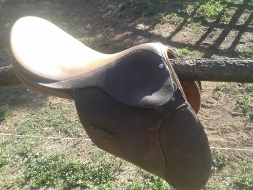Polo Saddle & Deco Saddle
