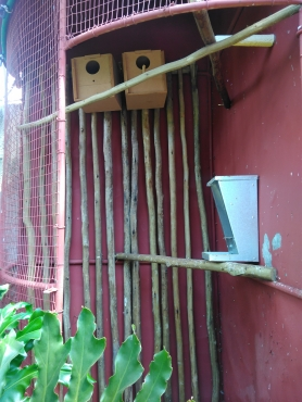 Bird cage ideal for breeding