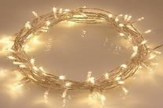 Battery operated fairy lights 5 meters.