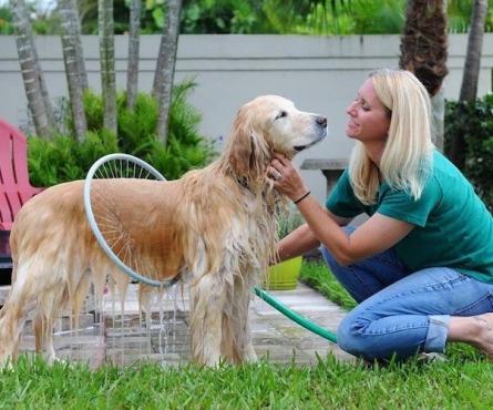 Woof Washer 360 Pet Washing System