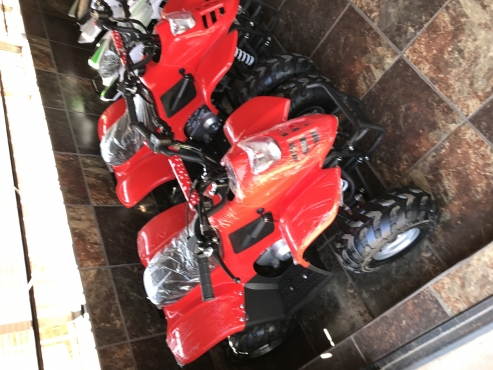 Automatic 110cc kids petrol quad bikes for sale - new