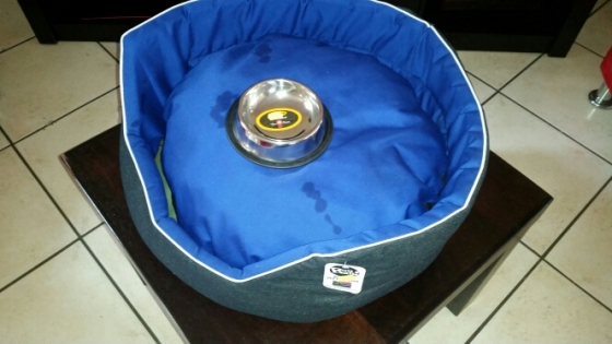 Brand new dog bed for R250