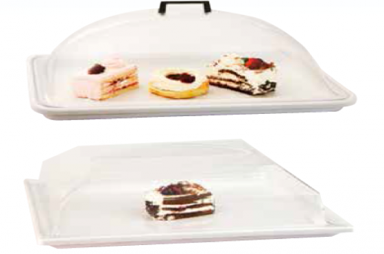ABS BUBBLE TRAY AND