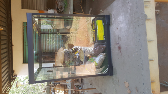 60×70×50.  Reptile enclosure